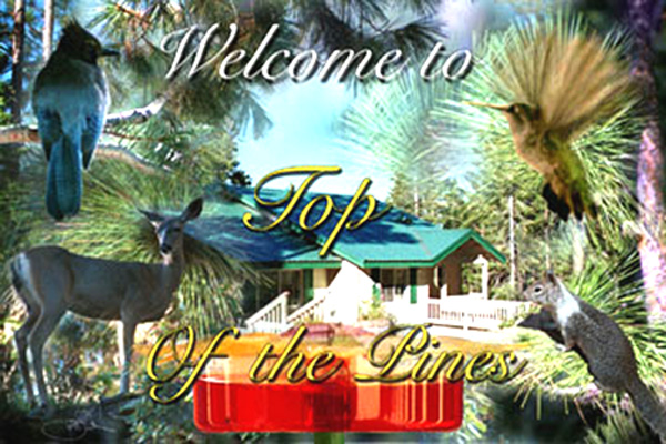 Top of the Pines logo - loading image....